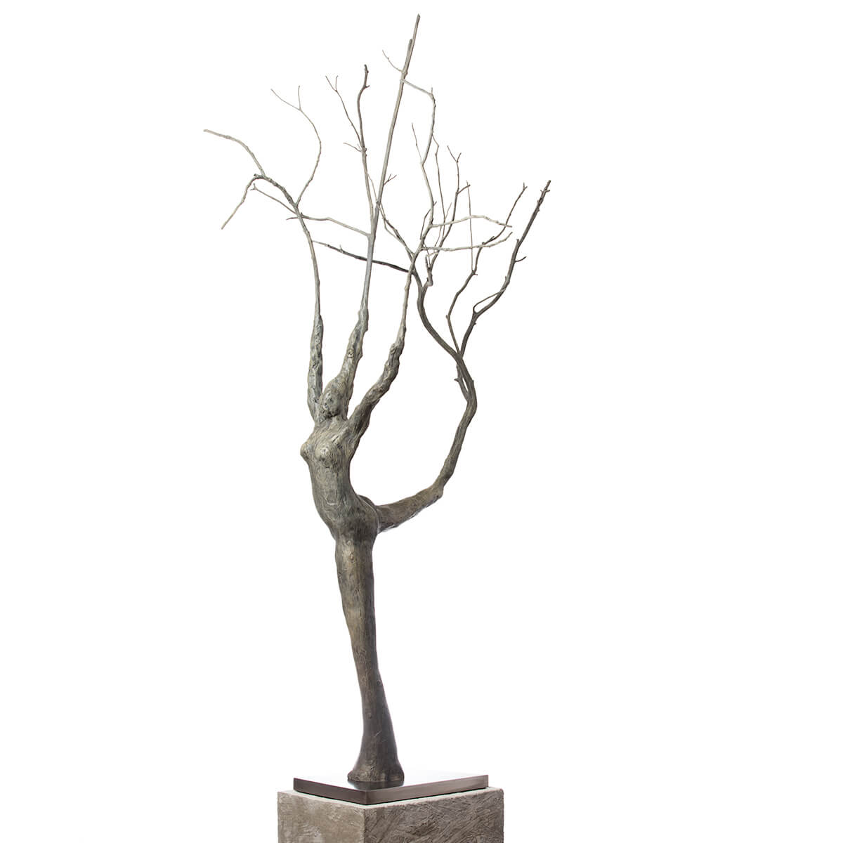 Robert-Helle-Sculpture-Gallery-Abstract-Lady-in-the-Tree-2-1200x1200
