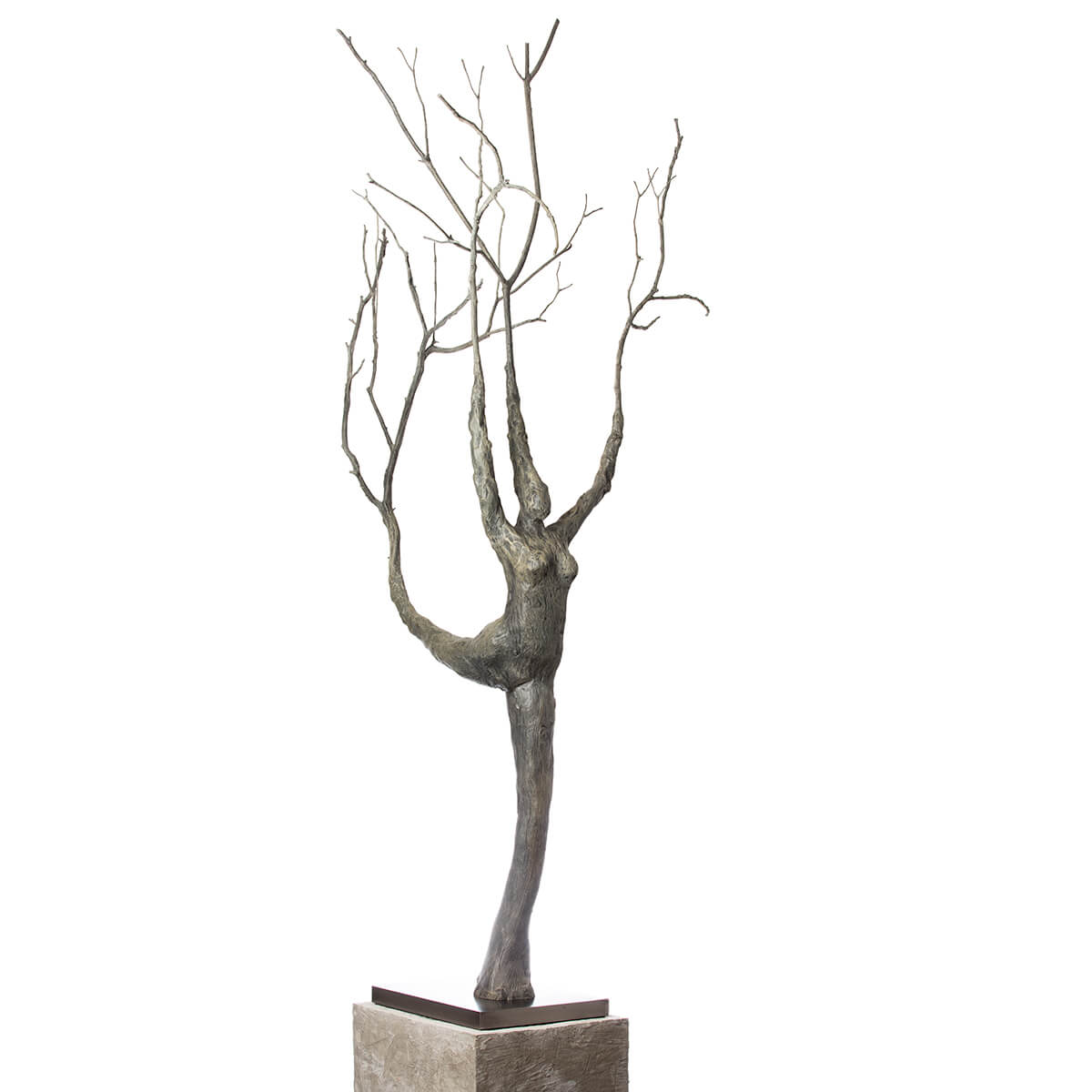 Robert-Helle-Sculpture-Gallery-Abstract-Lady-in-the-Tree-3-1200x1200